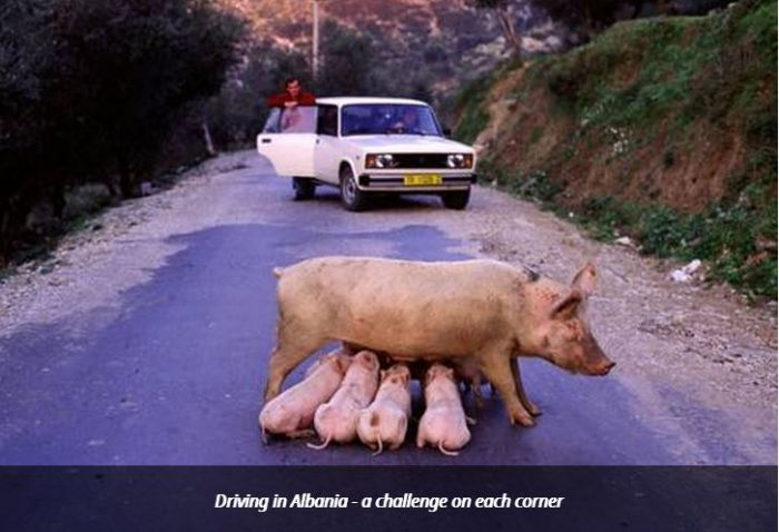 Driving in Albania: Not for the Fainthearted