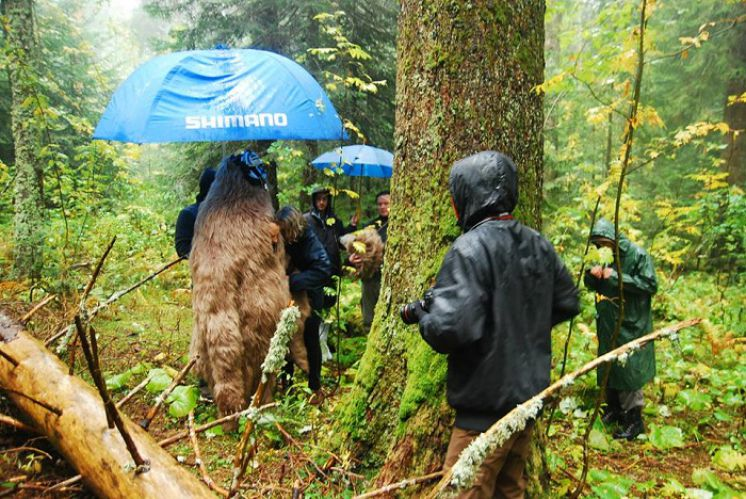 Holding an Umbrella for a Bear: The Making of a VIP Commercial in Croatia
